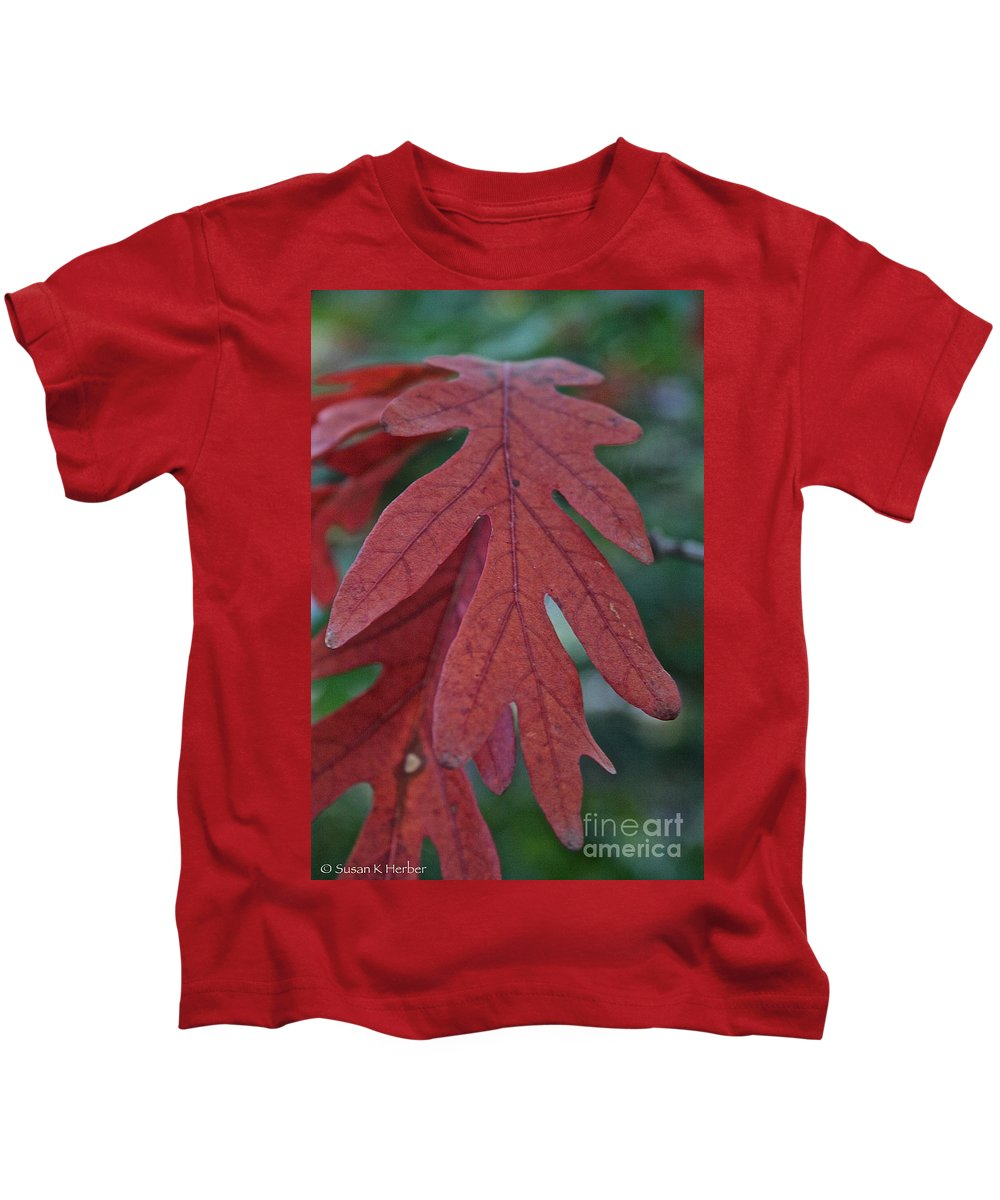 Outdoors Kids T-Shirt featuring the photograph Red Oak Leaf by Susan Herber