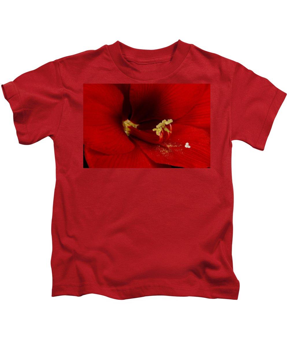 Amaryllis Kids T-Shirt featuring the photograph Orange Amaryllis Bloom by James BO Insogna