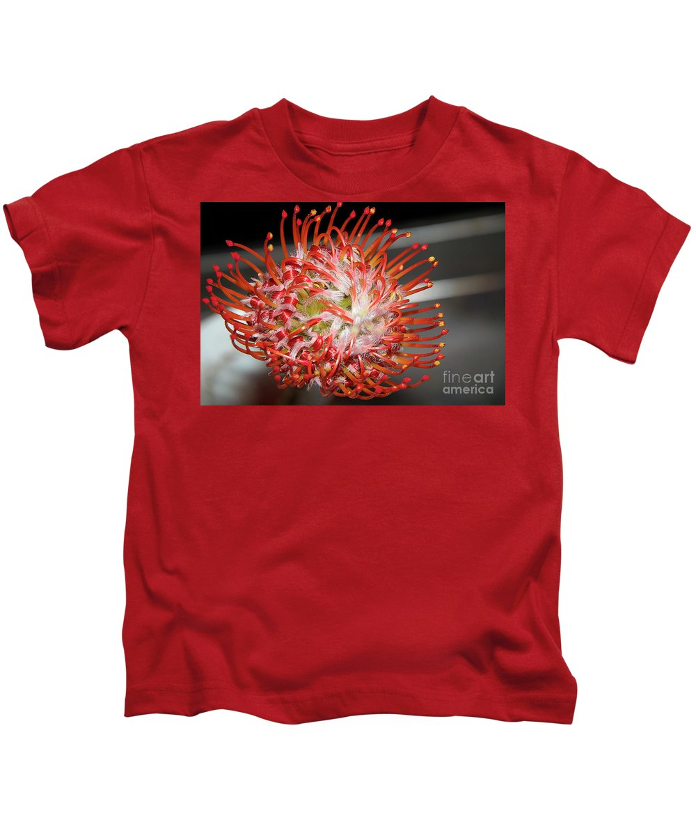Flowers Kids T-Shirt featuring the photograph Red Flower by Elvira Ladocki