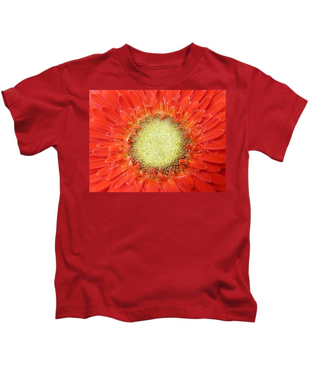 Gerbera Kids T-Shirt featuring the photograph Gerbera by Daniel Csoka