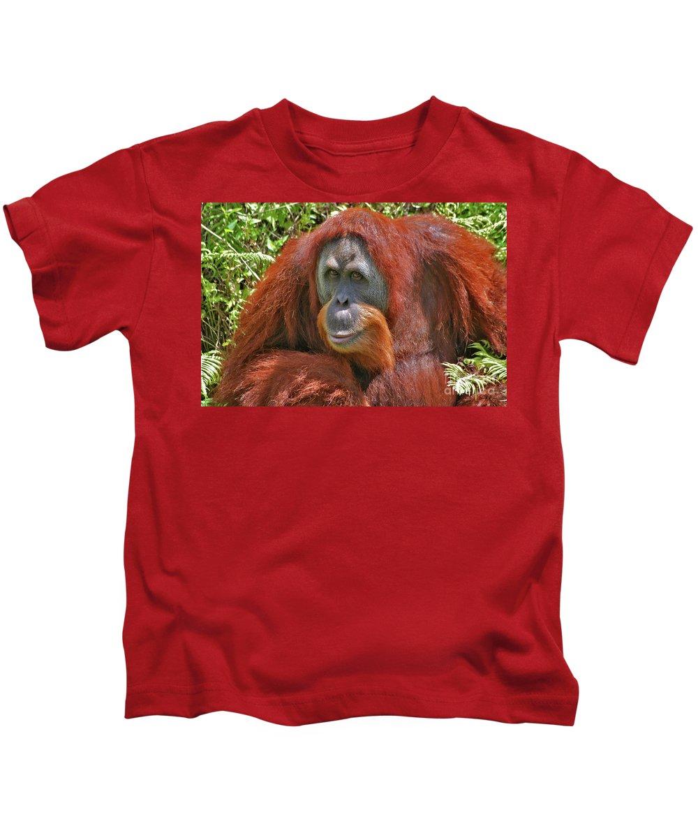 Bonnie Kids T-Shirt featuring the photograph 31- Orangutan by Joseph Keane