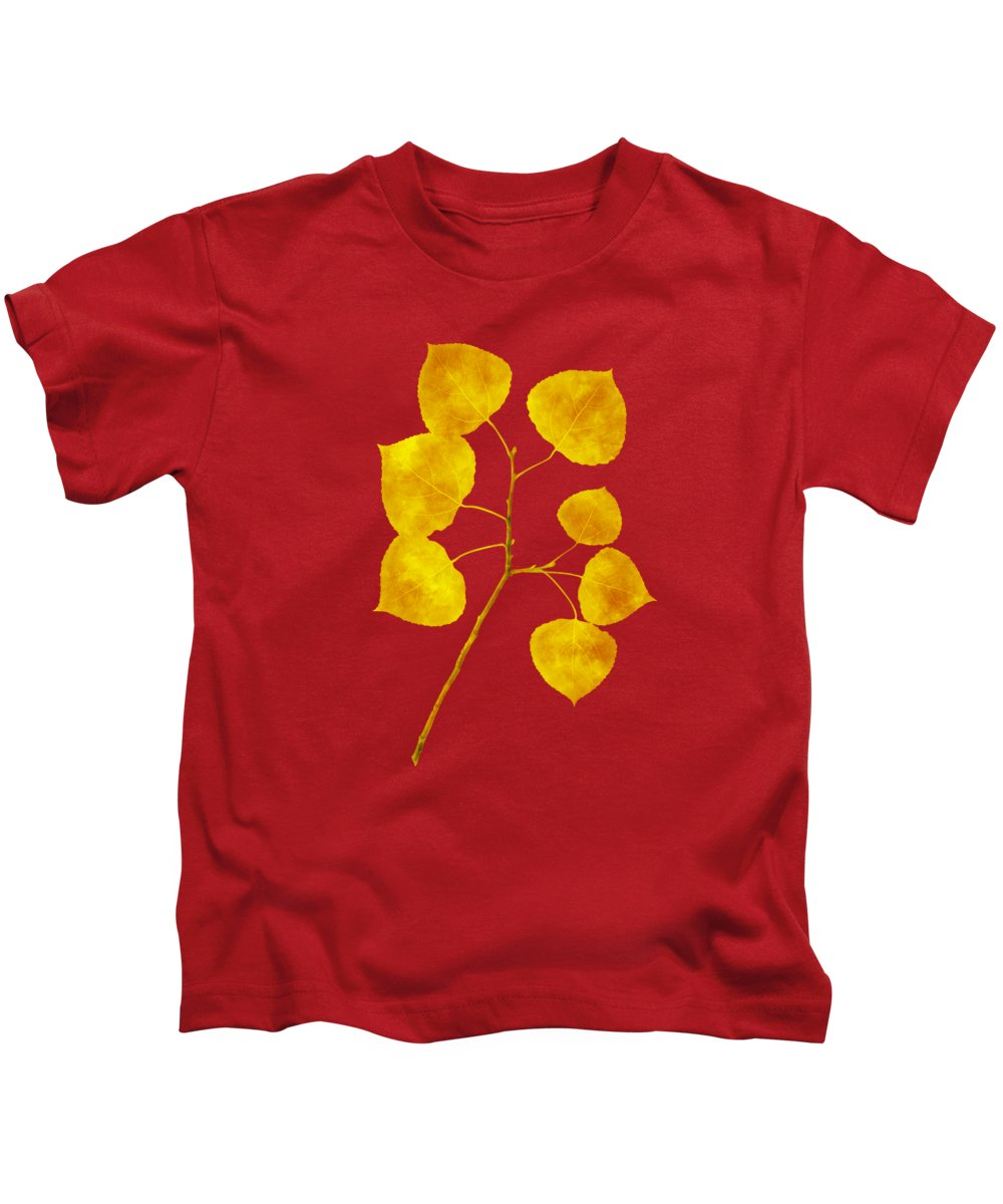 Aspen Tree Leaf Kids T-Shirt featuring the photograph Aspen Tree Leaf Art by Christina Rollo