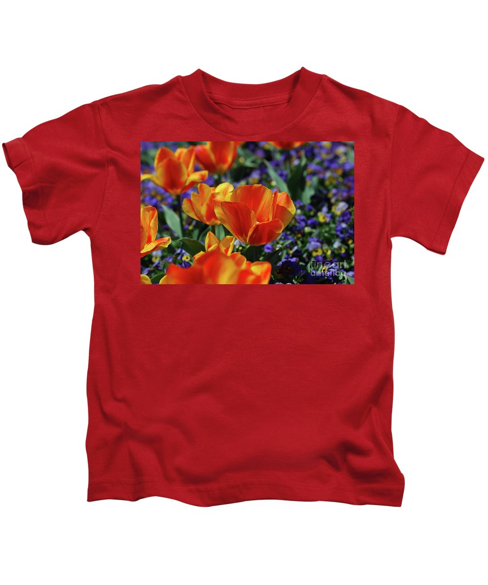 Tulip Kids T-Shirt featuring the photograph Bright Colored Garden With Striped Tulips In Bloom by DejaVu Designs