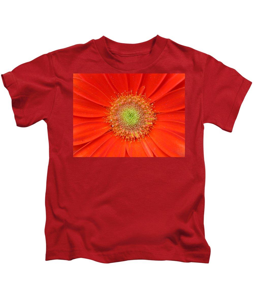 Gerbera Kids T-Shirt featuring the photograph Brighteyes by Marla McFall