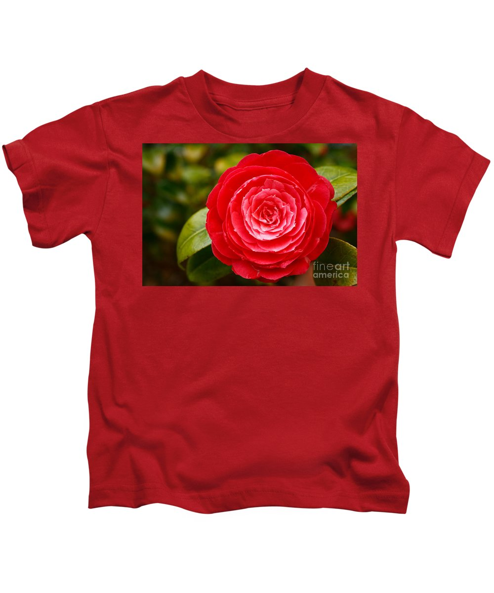 Azores Kids T-Shirt featuring the photograph Camellia Japonica by Gaspar Avila