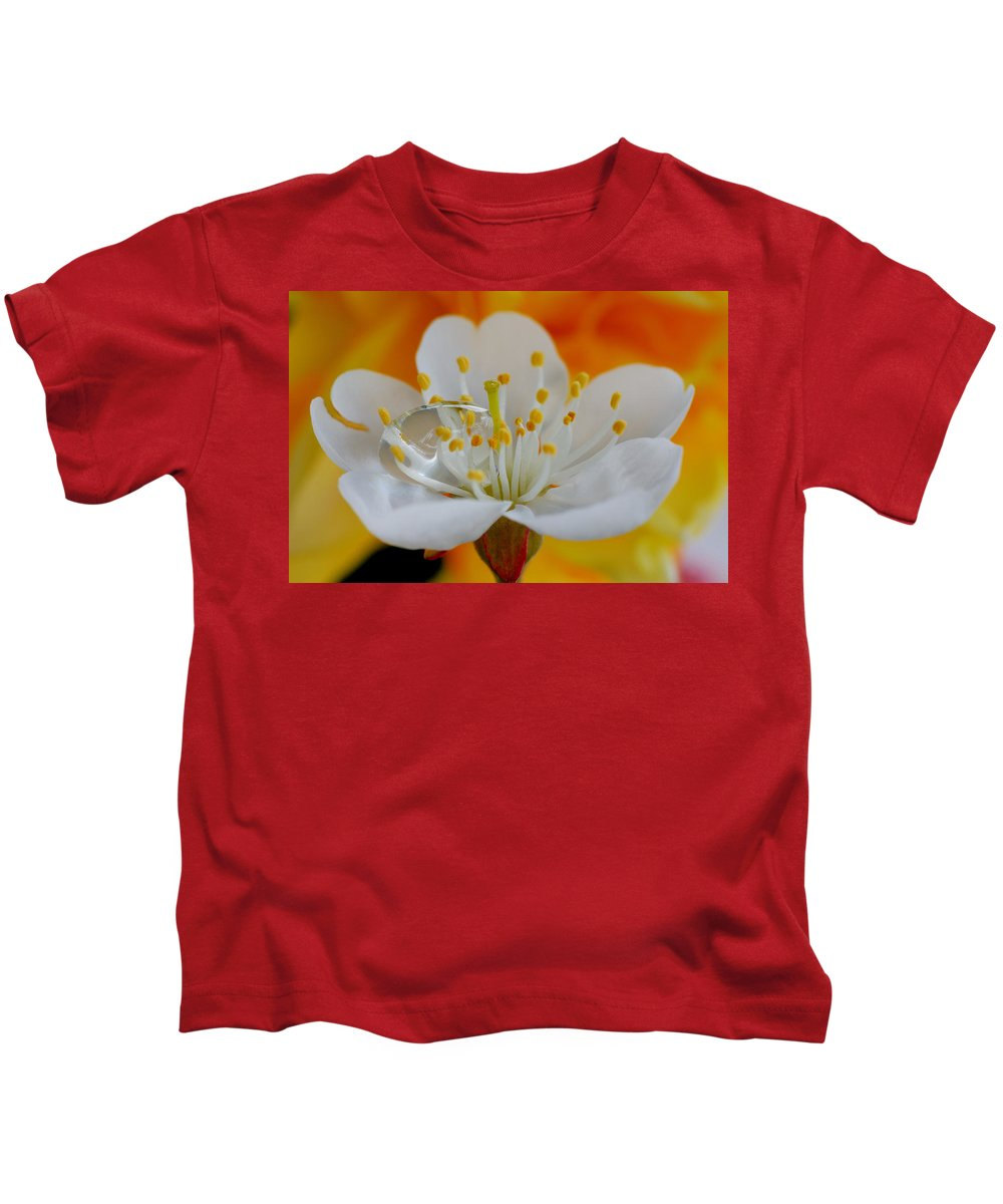 Blossom Kids T-Shirt featuring the photograph Cherry Flower In The Spring by Yuri Hope