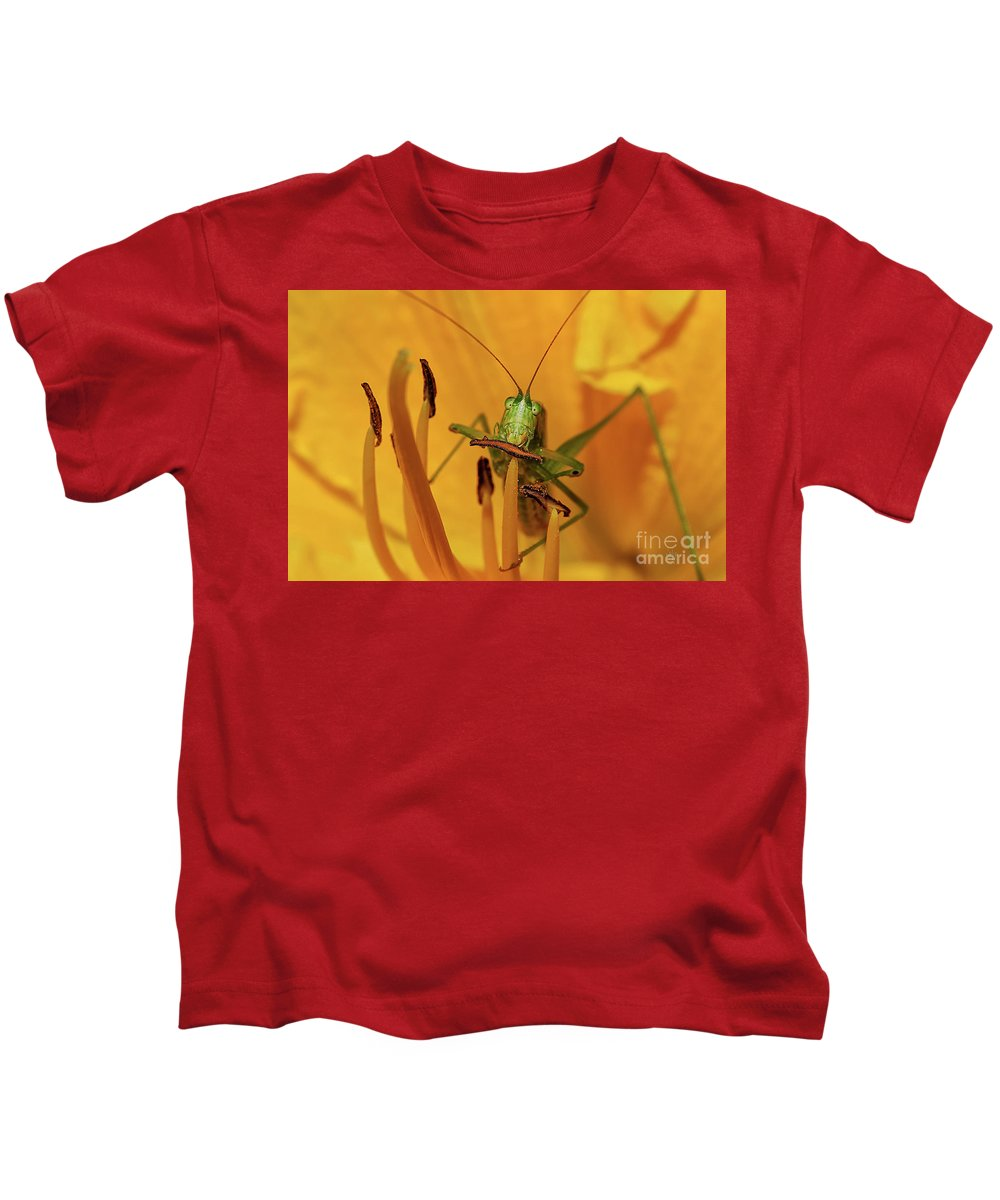 Bug Kids T-Shirt featuring the photograph Corn On The Cob by Lois Bryan
