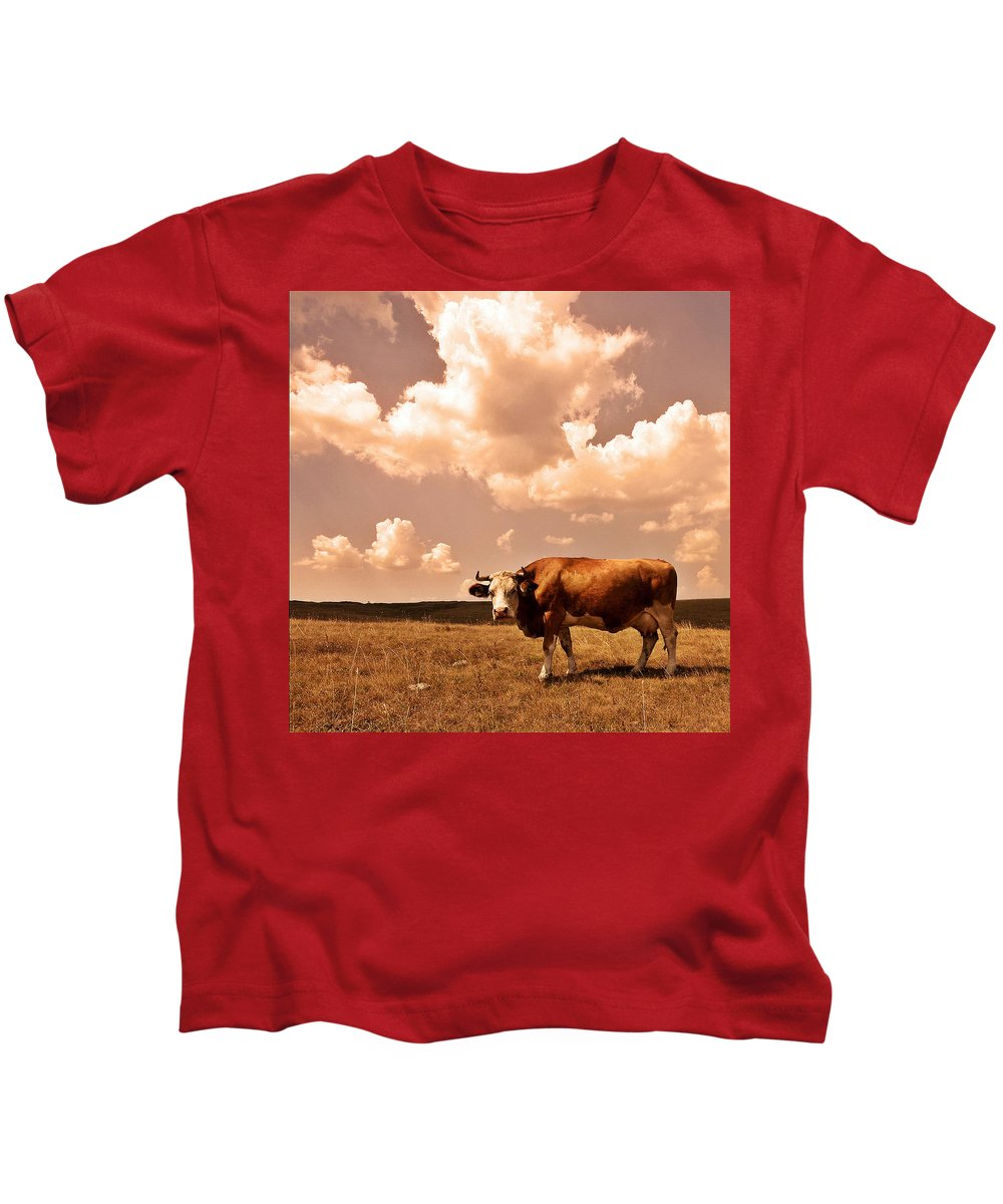Kids T-Shirt featuring the photograph Cow by Vladimir Damjanovic