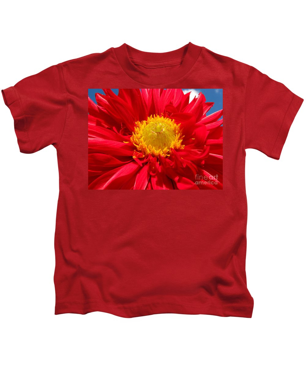 Dhalia Kids T-Shirt featuring the photograph Dhalia by Amanda Barcon