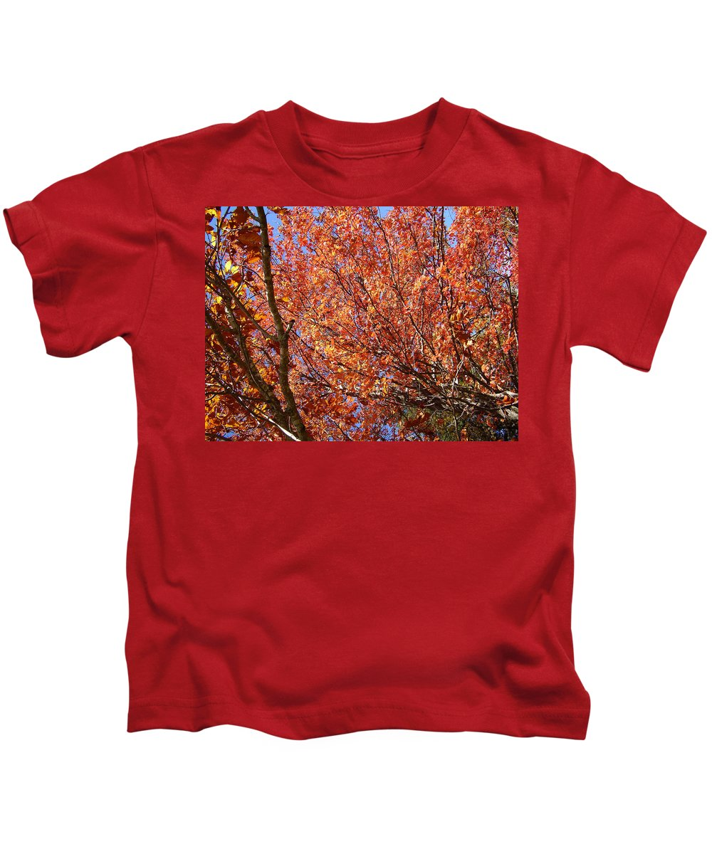 Fall Kids T-Shirt featuring the photograph Fall In The Blue Ridge Mountains by Flavia Westerwelle