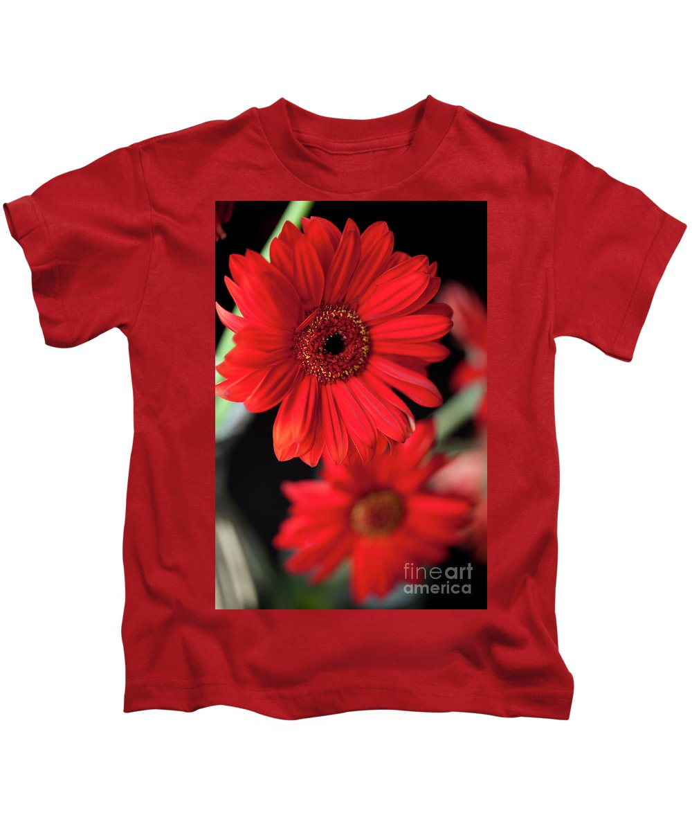 Gerbera Kids T-Shirt featuring the photograph Gerbera by Amanda Barcon