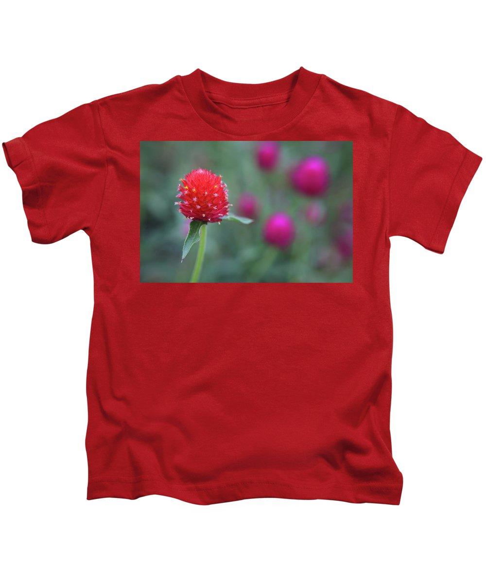 Gomphrena Globosa Flower Kids T-Shirt featuring the photograph Gomphrena Flower by Carol VanDyke