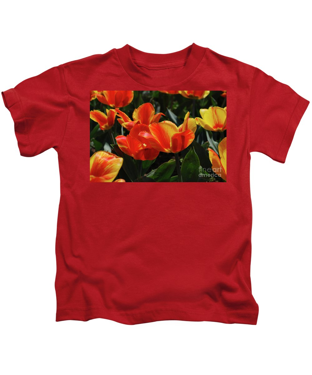 Tulip Kids T-Shirt featuring the photograph Gorgeous Flowering Orange And Red Blooming Tulips by DejaVu Designs