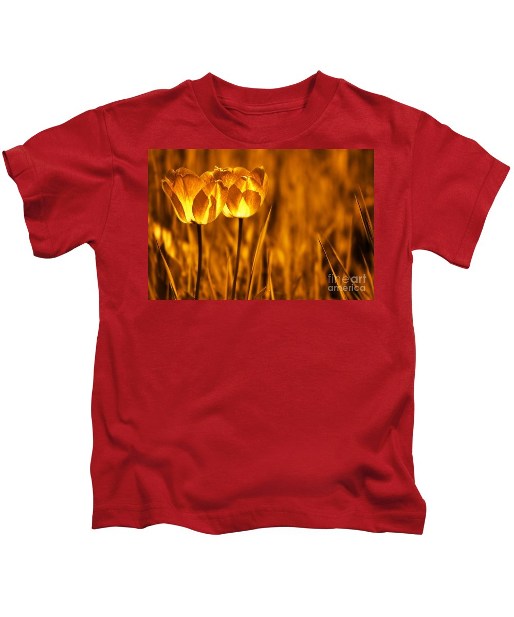 Tulips Kids T-Shirt featuring the photograph In A Perfect World by Jacky Gerritsen