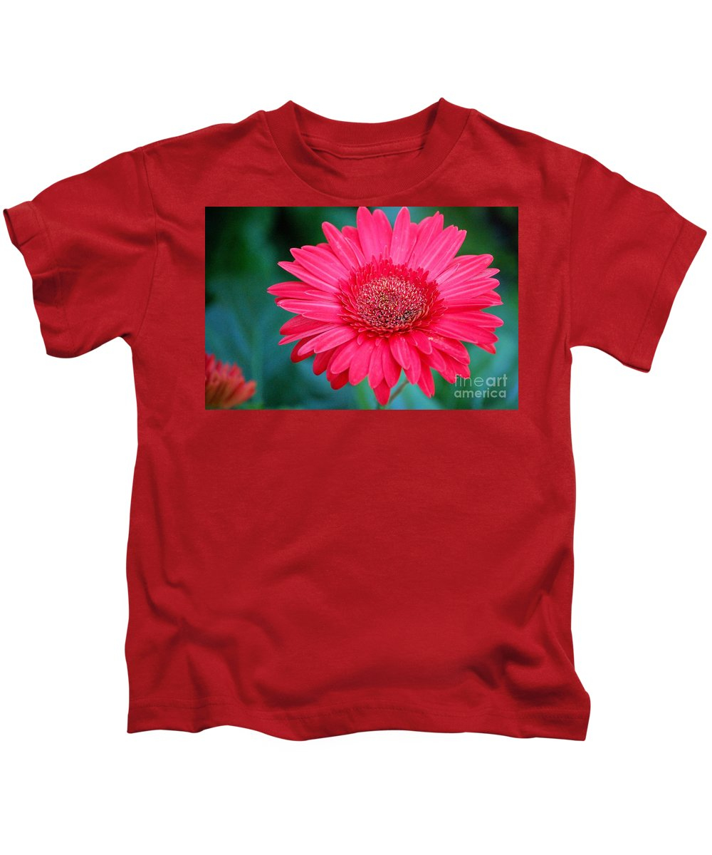 Gerber Daisy Kids T-Shirt featuring the photograph In The Pink by Debbi Granruth