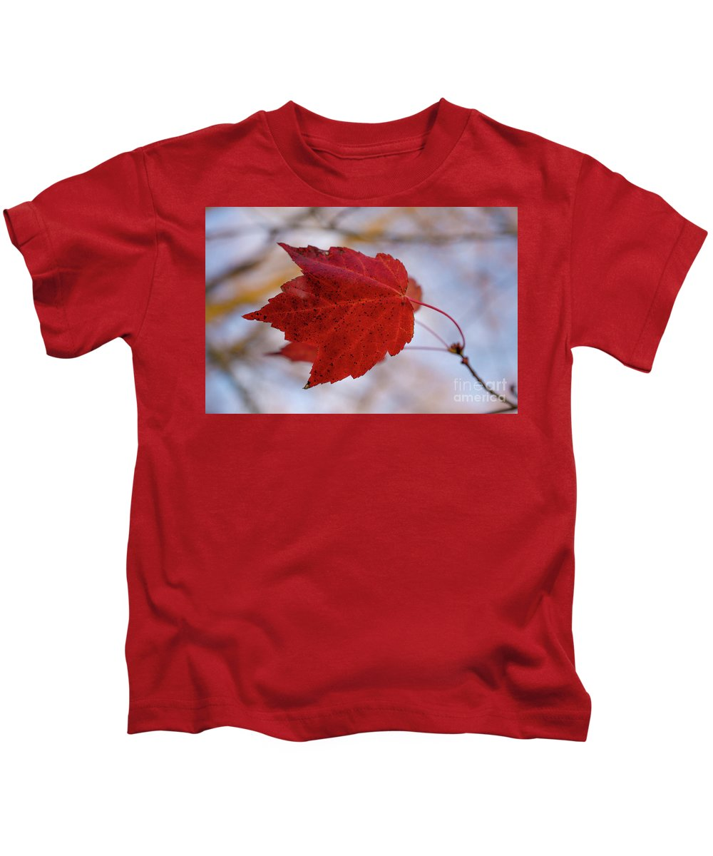 Art Kids T-Shirt featuring the photograph Last Of The Leaves Nature Photograph by Melissa Fague