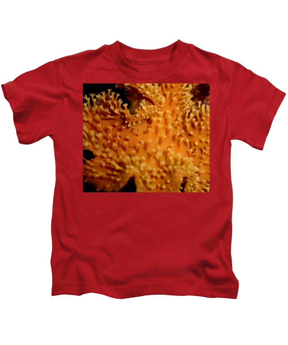 Underwater Kids T-Shirt featuring the photograph Leather Coral by Anthony Jones