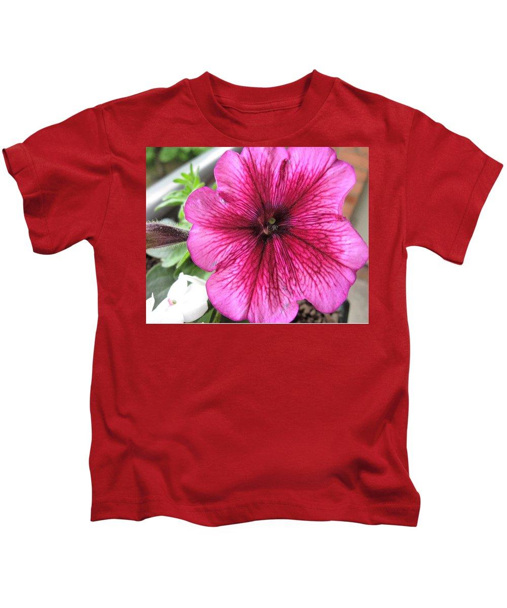 Seasonal Kids T-Shirt featuring the photograph Morning Glory 2 by Paula Laschenski SNDdeN