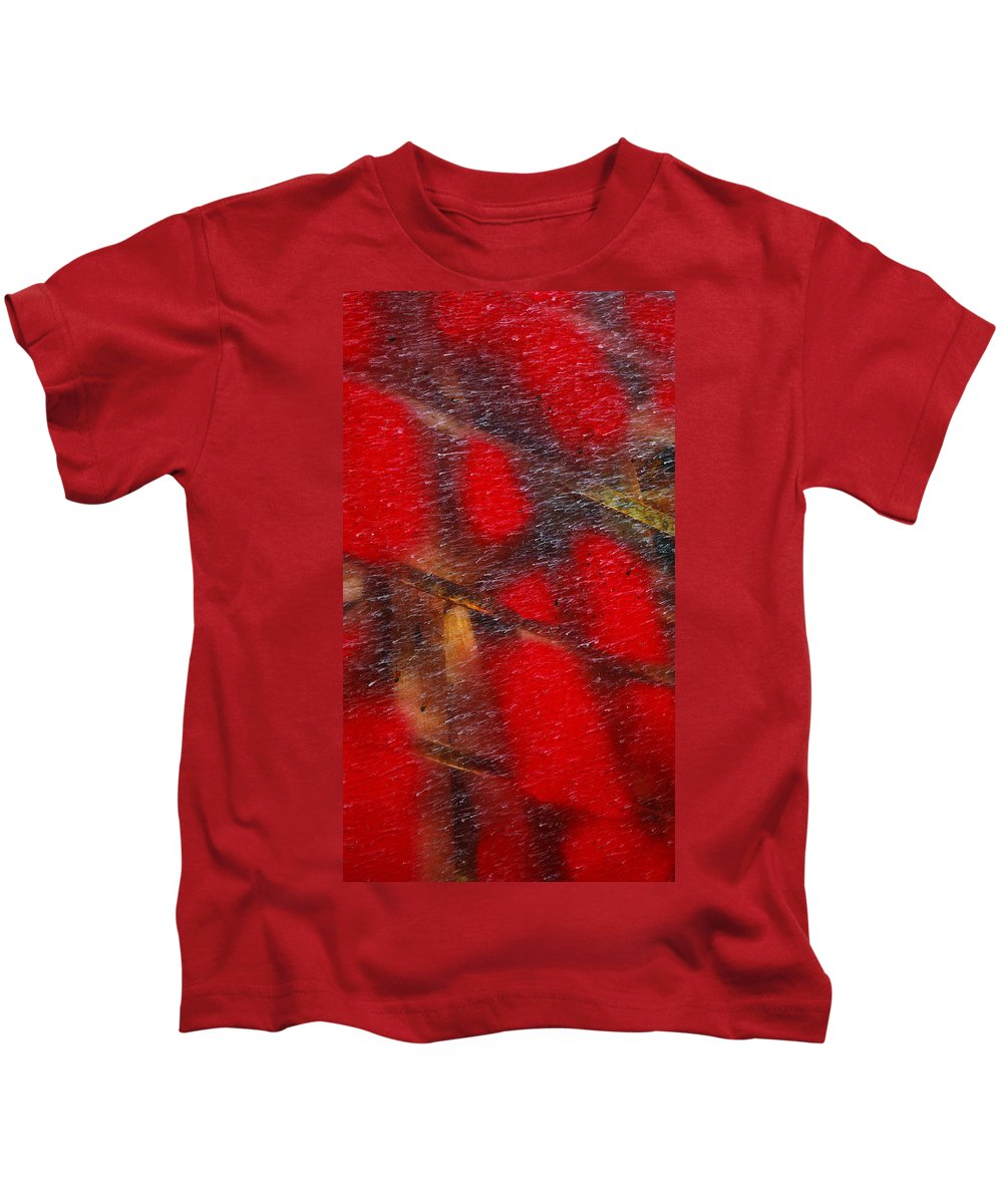 Skip Hunt Kids T-Shirt featuring the photograph National Treasure by Skip Hunt