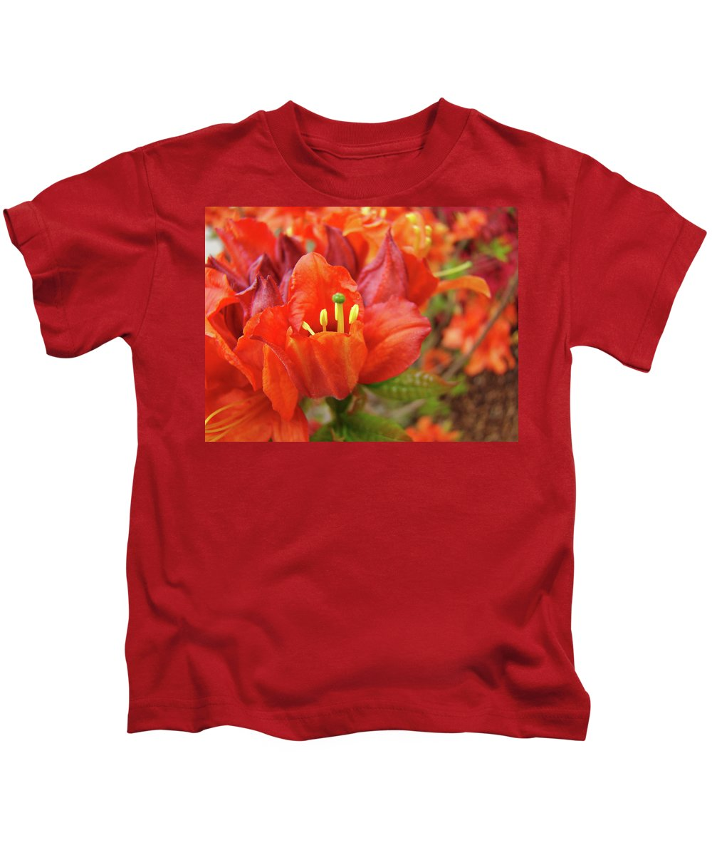 Orange Kids T-Shirt featuring the photograph Office Art Prints Orange Azalea Flowers 20 Giclee Prints Baslee Troutman by Baslee Troutman
