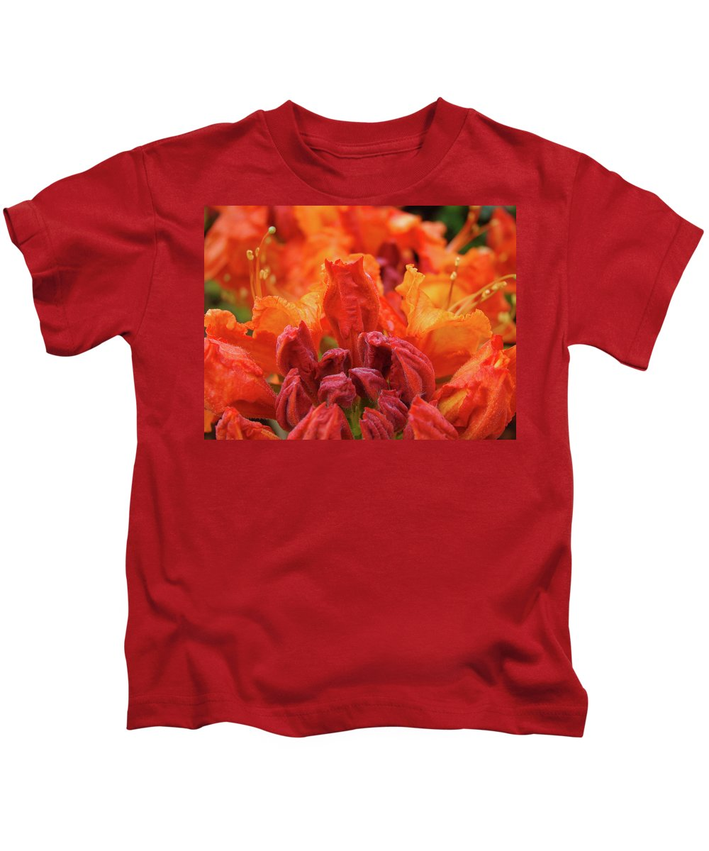 �azaleas Artwork� Kids T-Shirt featuring the photograph Office Art Prints Orange Azaleas Flowers 9 Giclee Prints Baslee Troutman by Baslee Troutman