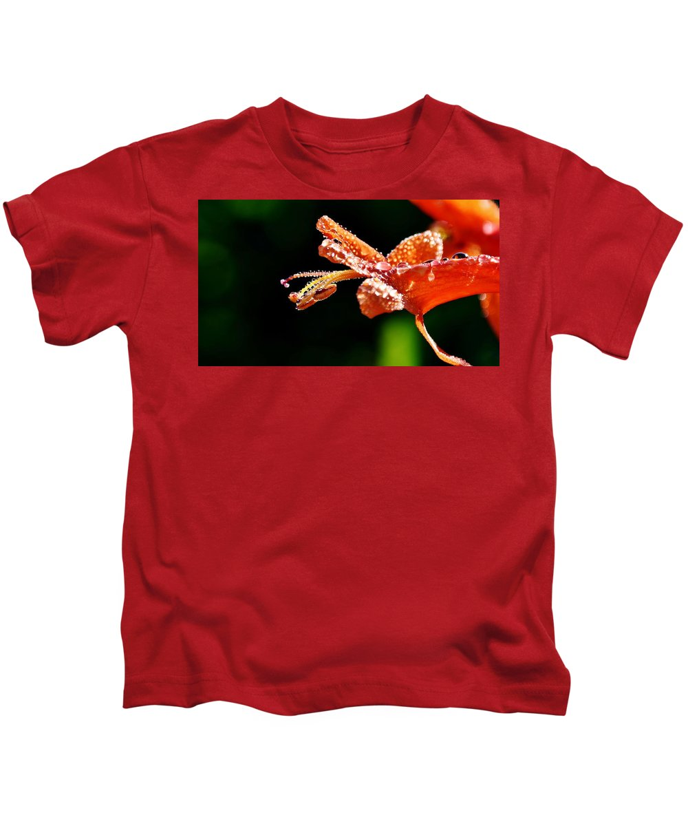 Close Up; Orange; Green; Cape Honeysuckle Bush; Blossom; Dew Drops; Wet; Macro; Floral; Petals; Drops; Kids T-Shirt featuring the photograph Orange Cape Honeysuckle Bush Blossom by Werner Lehmann