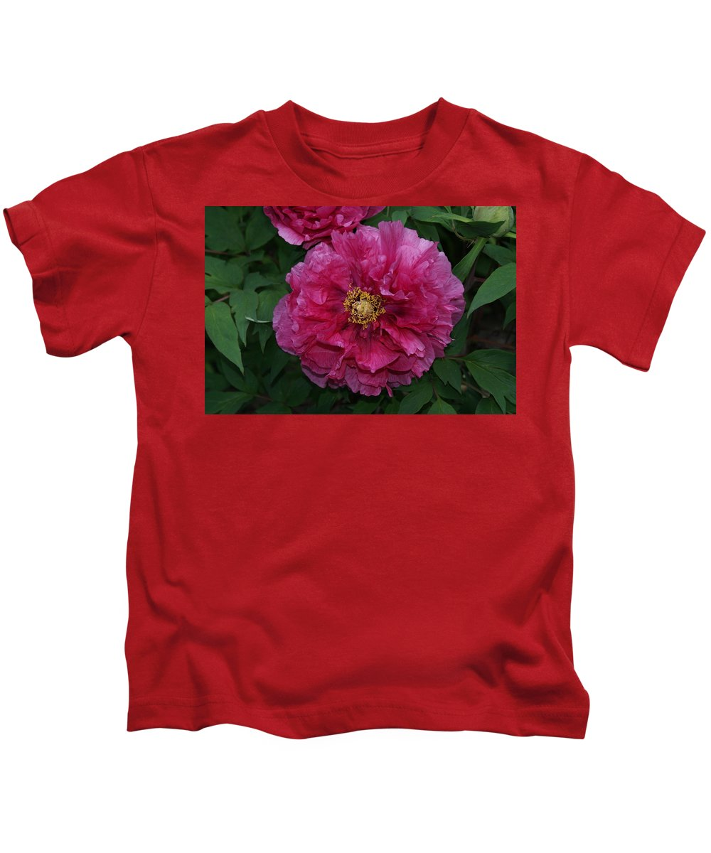Usa Kids T-Shirt featuring the photograph Pink Bloom Peony Tree by Holly Eads