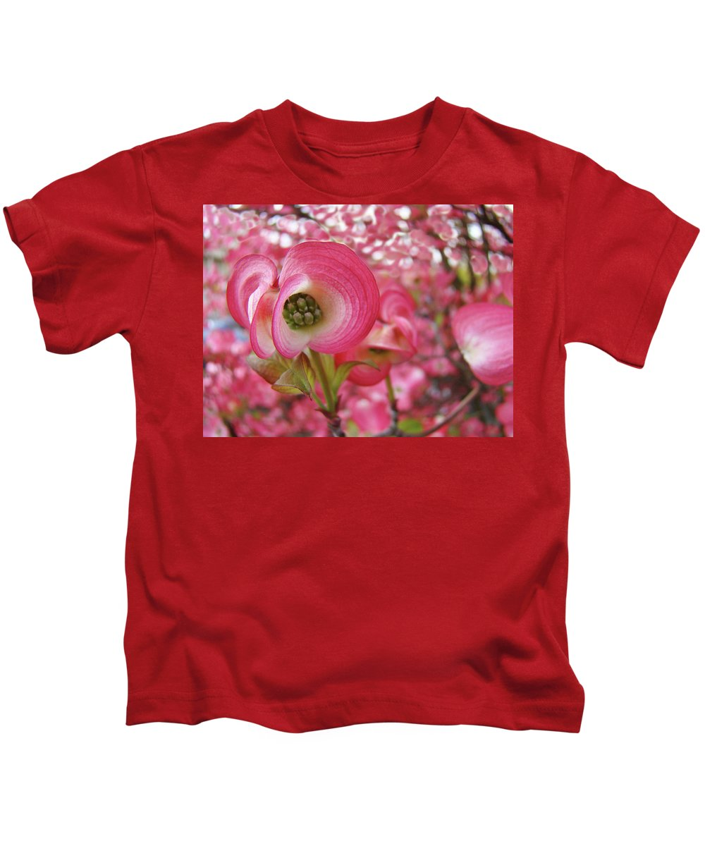 Dogwood Kids T-Shirt featuring the photograph Pink Dogwood Tree Flowers Dogwood Flowers Giclee Art Prints Baslee Troutman by Baslee Troutman