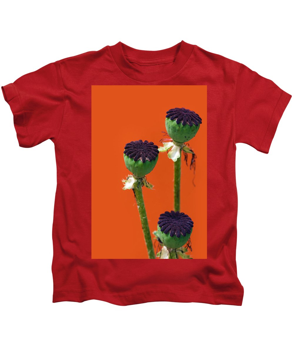 Interior Design Kids T-Shirt featuring the photograph Poppies On Orange by Lisa Knechtel