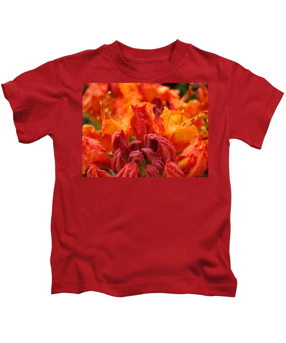 �azaleas Artwork� Kids T-Shirt featuring the photograph Red Azaleas Orange Azalea Flowers 9 Floral Giclee Art Prints Baslee Troutman by Baslee Troutman
