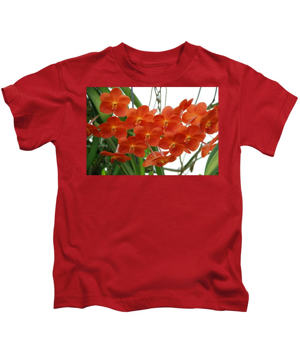 Macro Kids T-Shirt featuring the photograph Red Flowers by Rob Hans