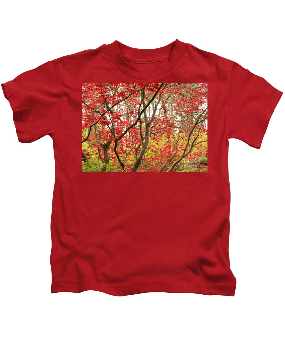 Leaves Kids T-Shirt featuring the photograph Red Maple Leaves And Branches by Carol Groenen