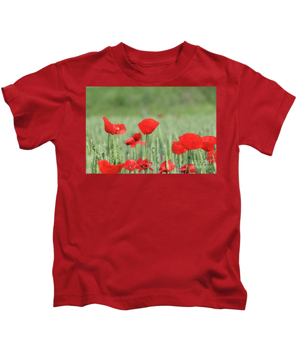 Wheat Kids T-Shirt featuring the photograph Red Poppy Flower And Green Wheat Nature Spring Scene by Goce Risteski