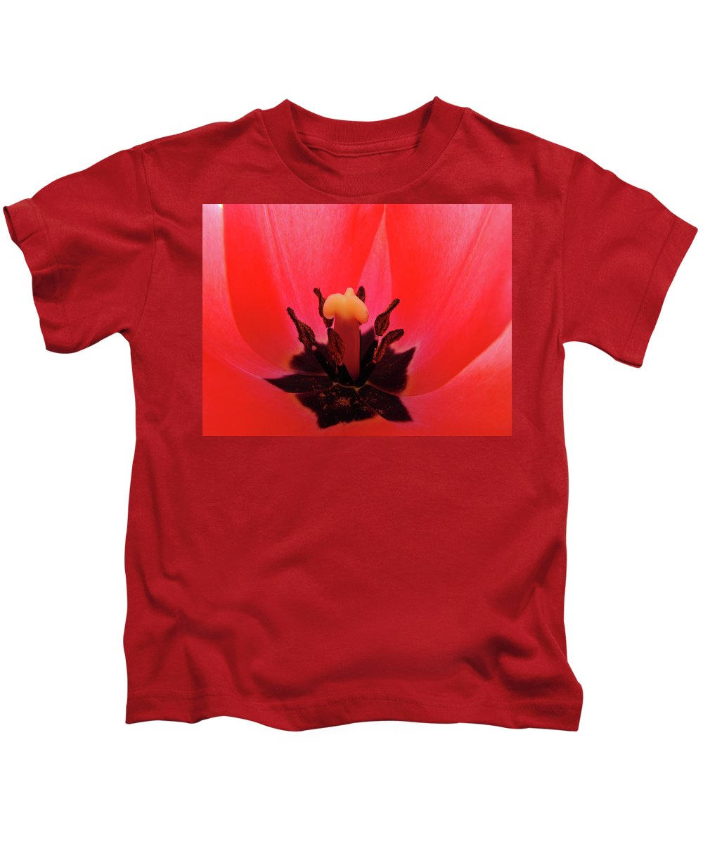 Tulip Kids T-Shirt featuring the photograph Red Tulip Art Print Inside Tulips Flowers Baslee Troutman by Baslee Troutman