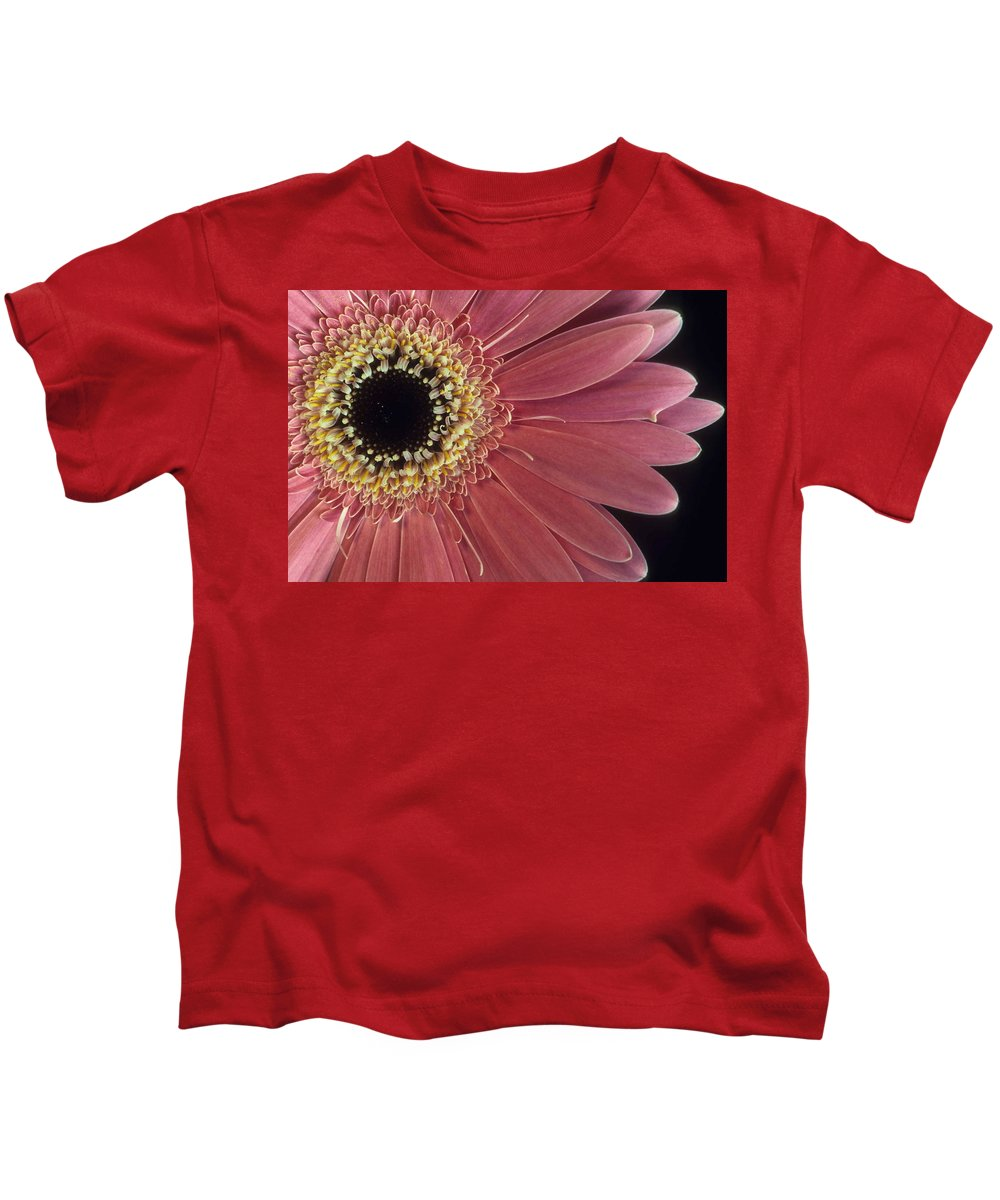 Salmon Gerber Daisy Kids T-Shirt featuring the photograph Salmon Gerber Daisy by Laurie Paci