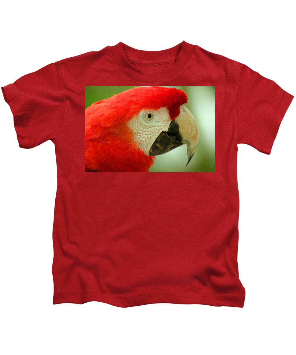 Parrot Kids T-Shirt featuring the photograph Scarlett Macaw South America by Ralph A Ledergerber-Photography
