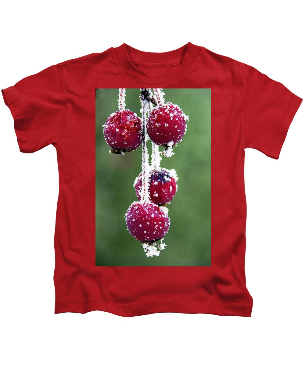 Berries Kids T-Shirt featuring the photograph Seasonal Colors by Marilyn Hunt