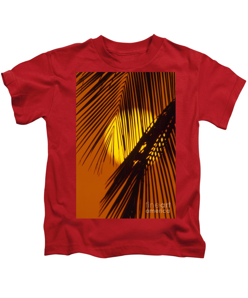 Bright Kids T-Shirt featuring the photograph Sun Shining Through Palms by Ron Dahlquist - Printscapes
