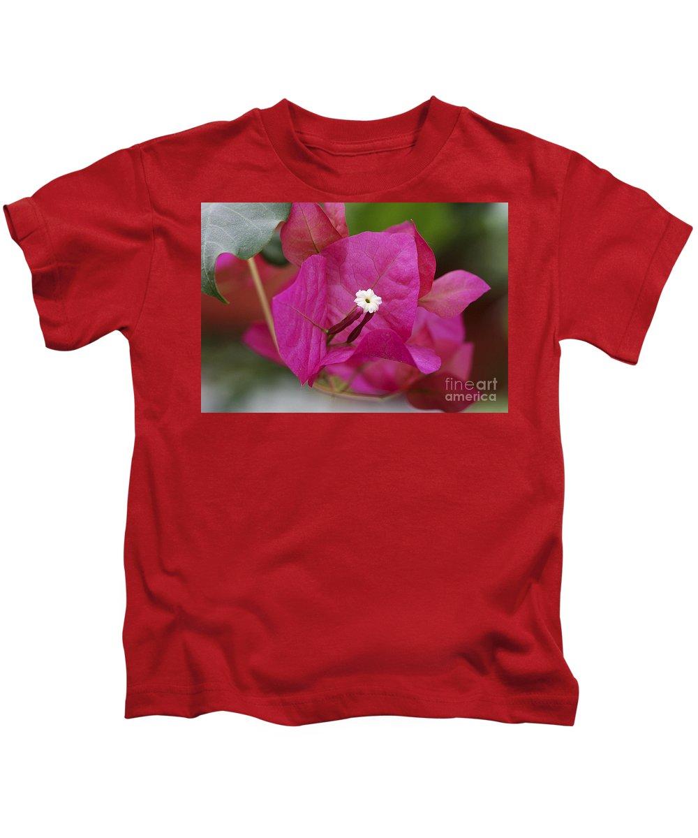 Kids T-Shirt featuring the photograph Tiny Little White Flower by Deborah Benoit