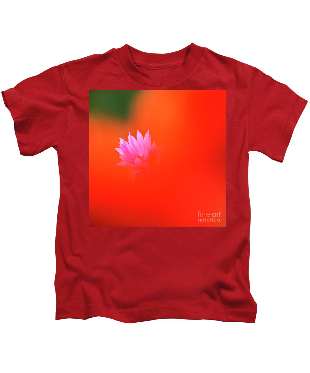Cornflower Kids T-Shirt featuring the photograph Tucked Away by Heiko Koehrer-Wagner