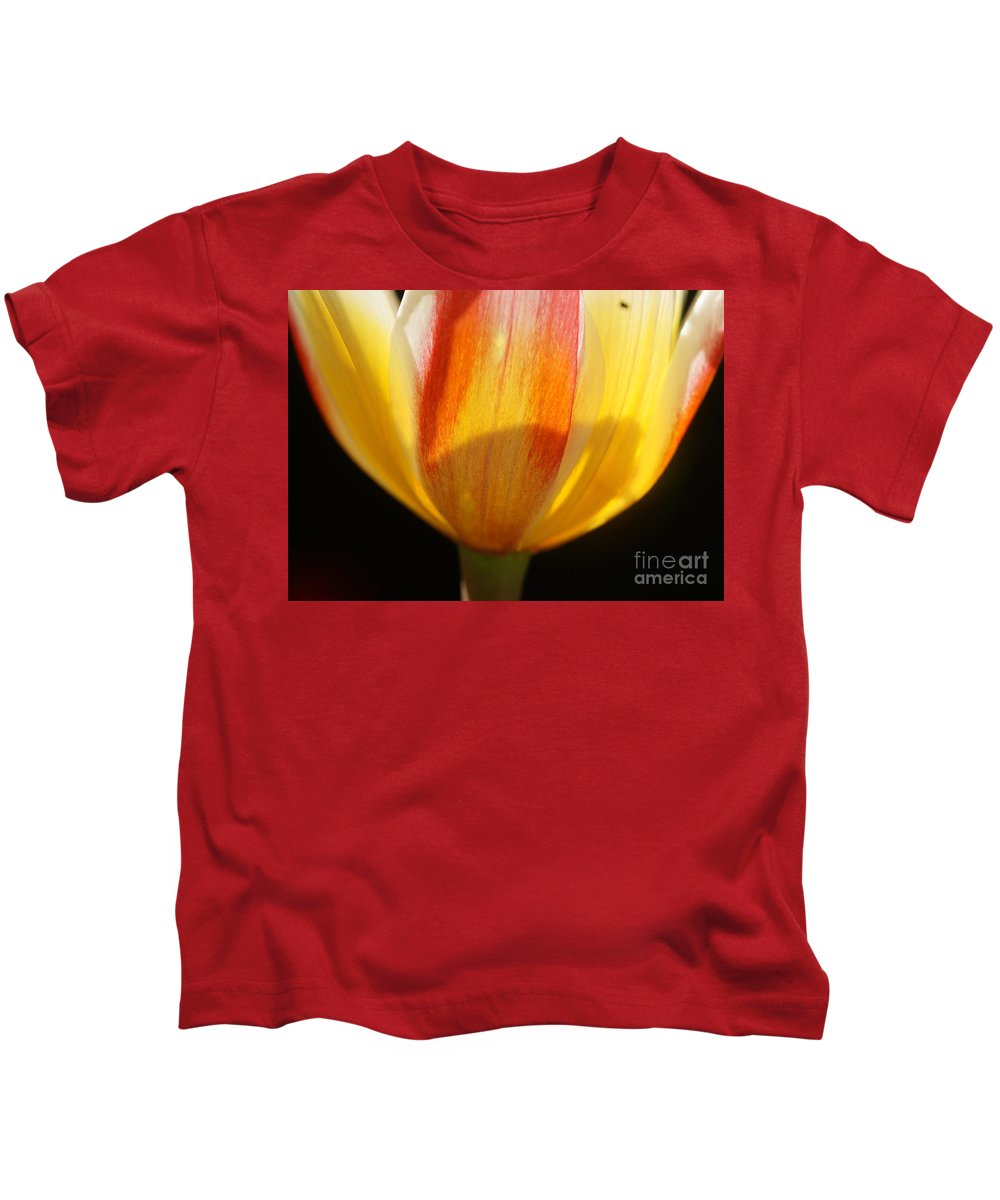 Prott Kids T-Shirt featuring the photograph Tulip Calyx In Backlight 4 by Rudi Prott