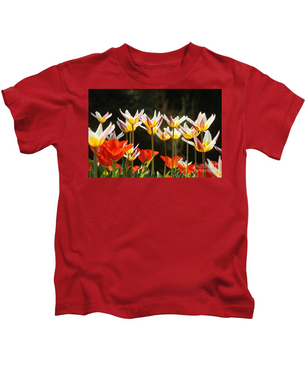 Prott Kids T-Shirt featuring the photograph Tulip Field 11 by Rudi Prott