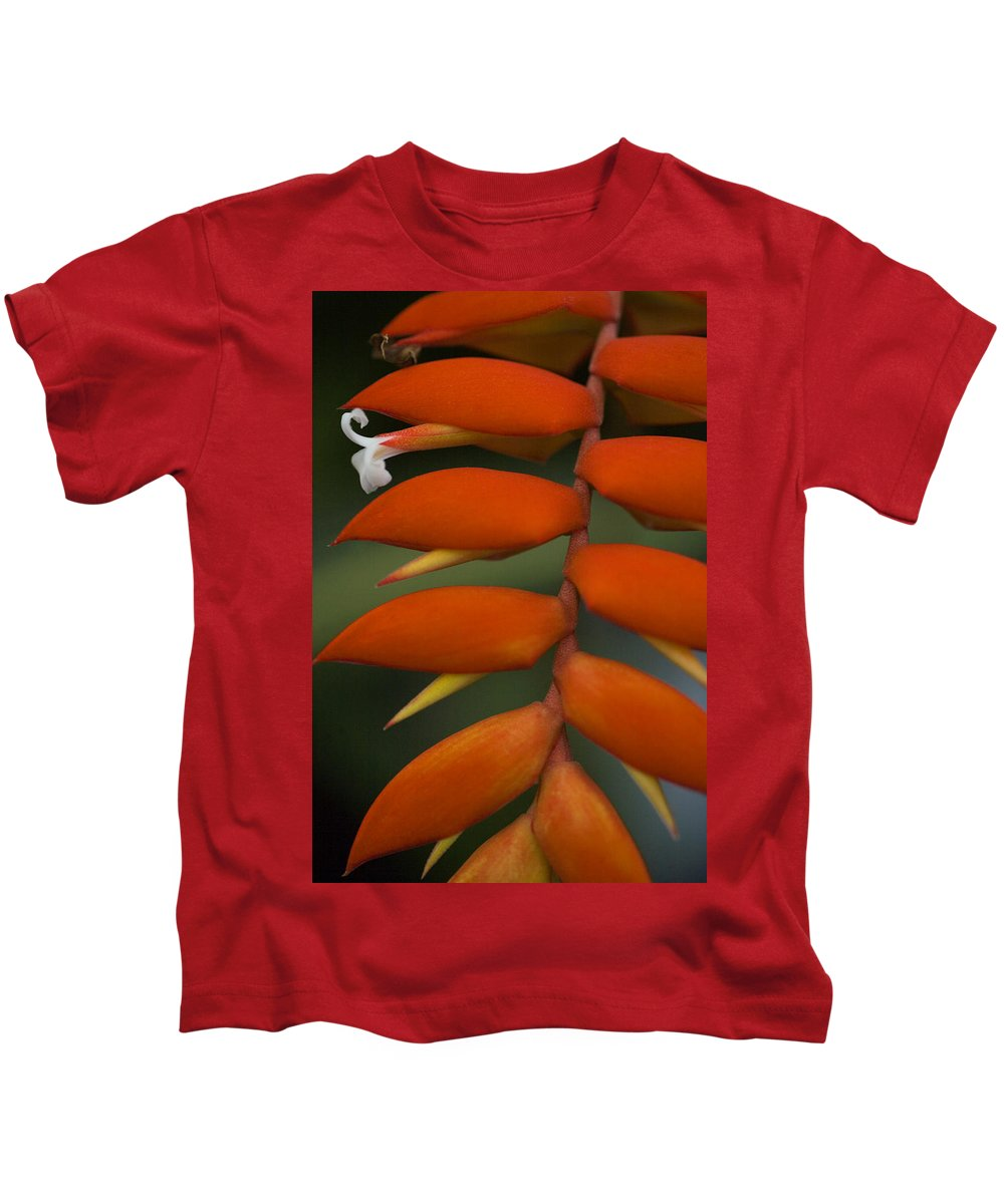 Heliconia Kids T-Shirt featuring the photograph White Flower by Karen Ulvestad