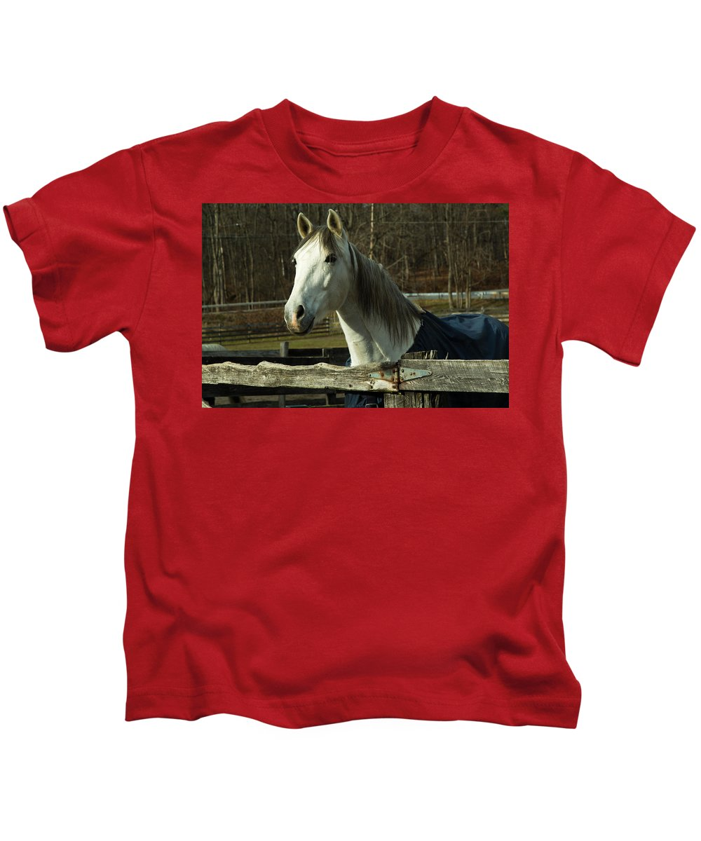 Horse Kids T-Shirt featuring the photograph White Horse by Robert Rotkowitz