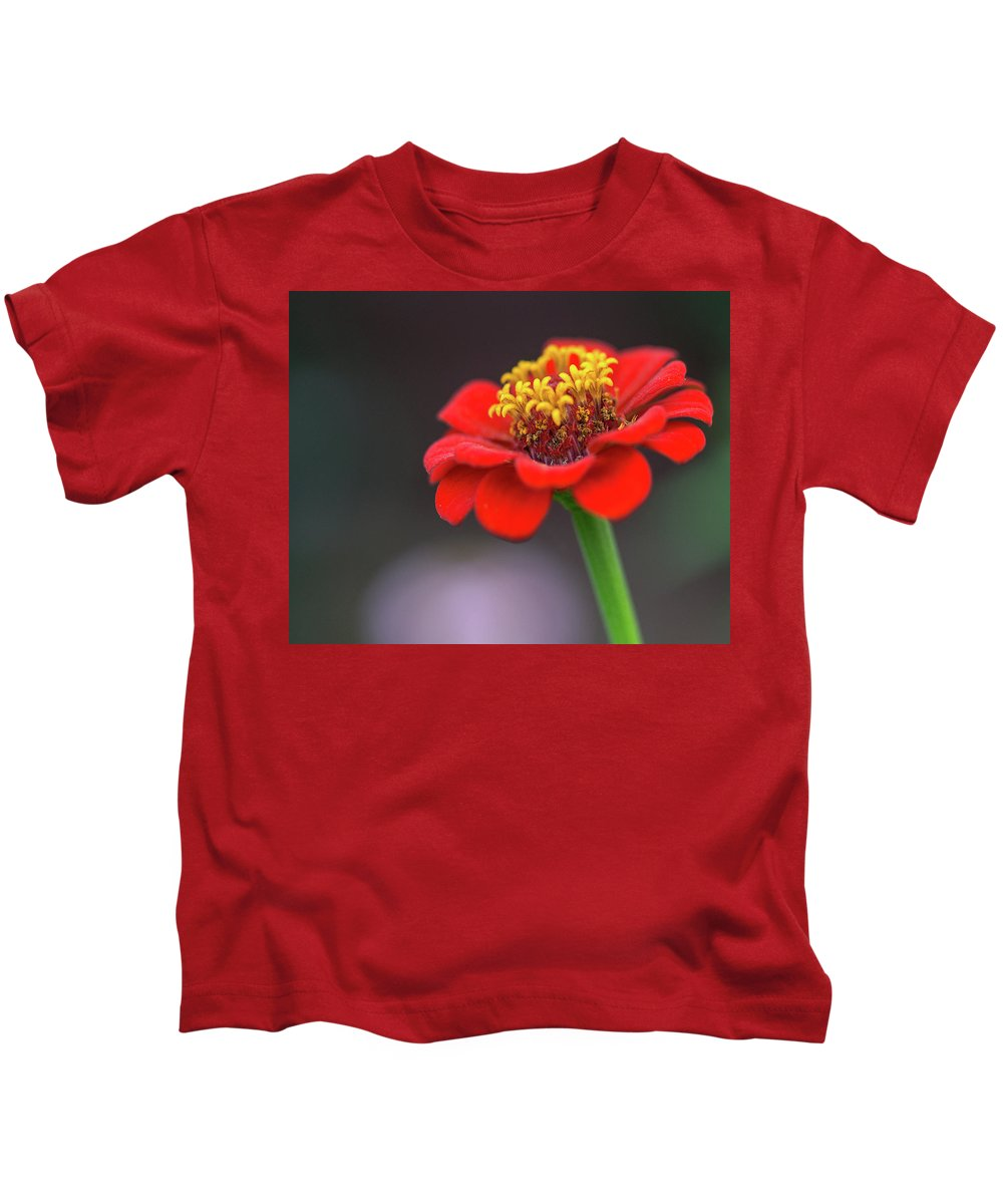 Flower Kids T-Shirt featuring the photograph Zinnia In The Evening by Mitford Fontaine