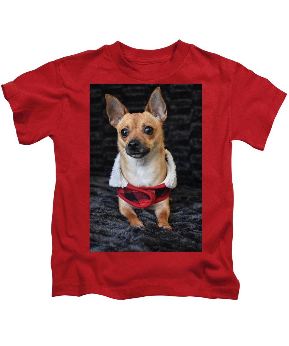 Chihuahua Kids T-Shirt featuring the digital art Miracle by Cassidy Marshall