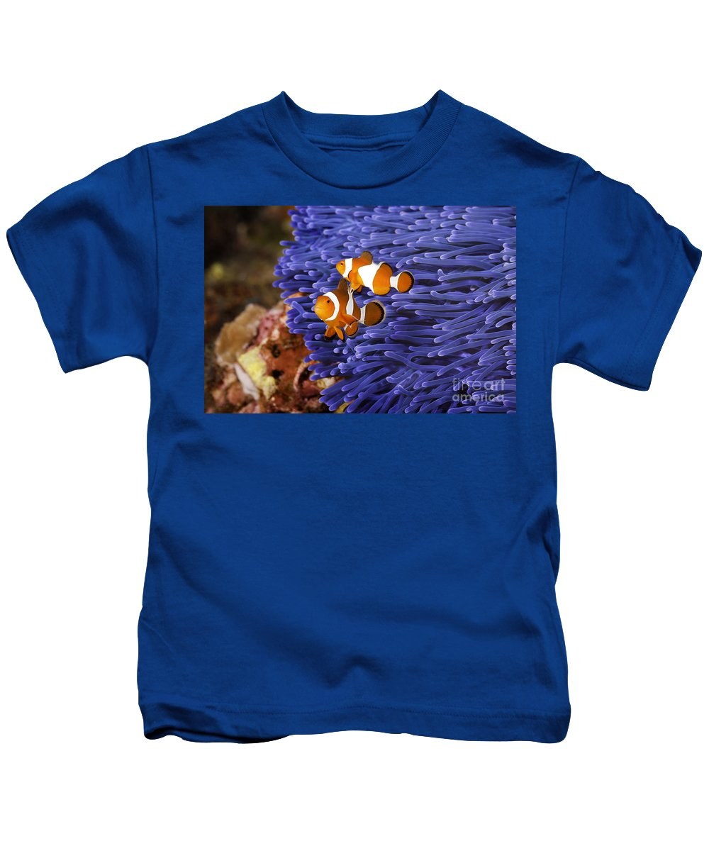 Anemone Kids T-Shirt featuring the photograph Ocellaris Clownfish by Anthony Totah