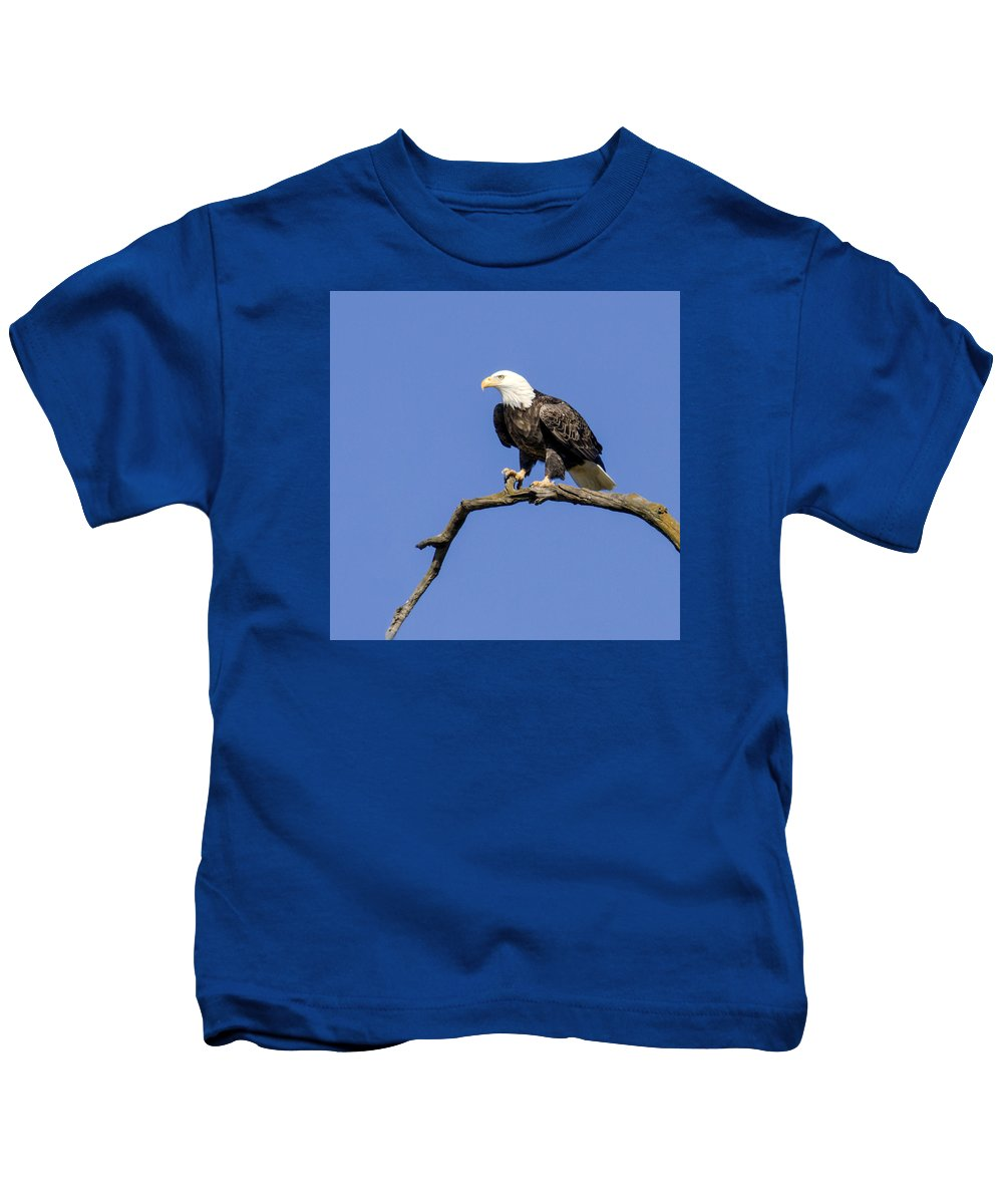 Eagle Kids T-Shirt featuring the photograph King Of The Sky by David Lester