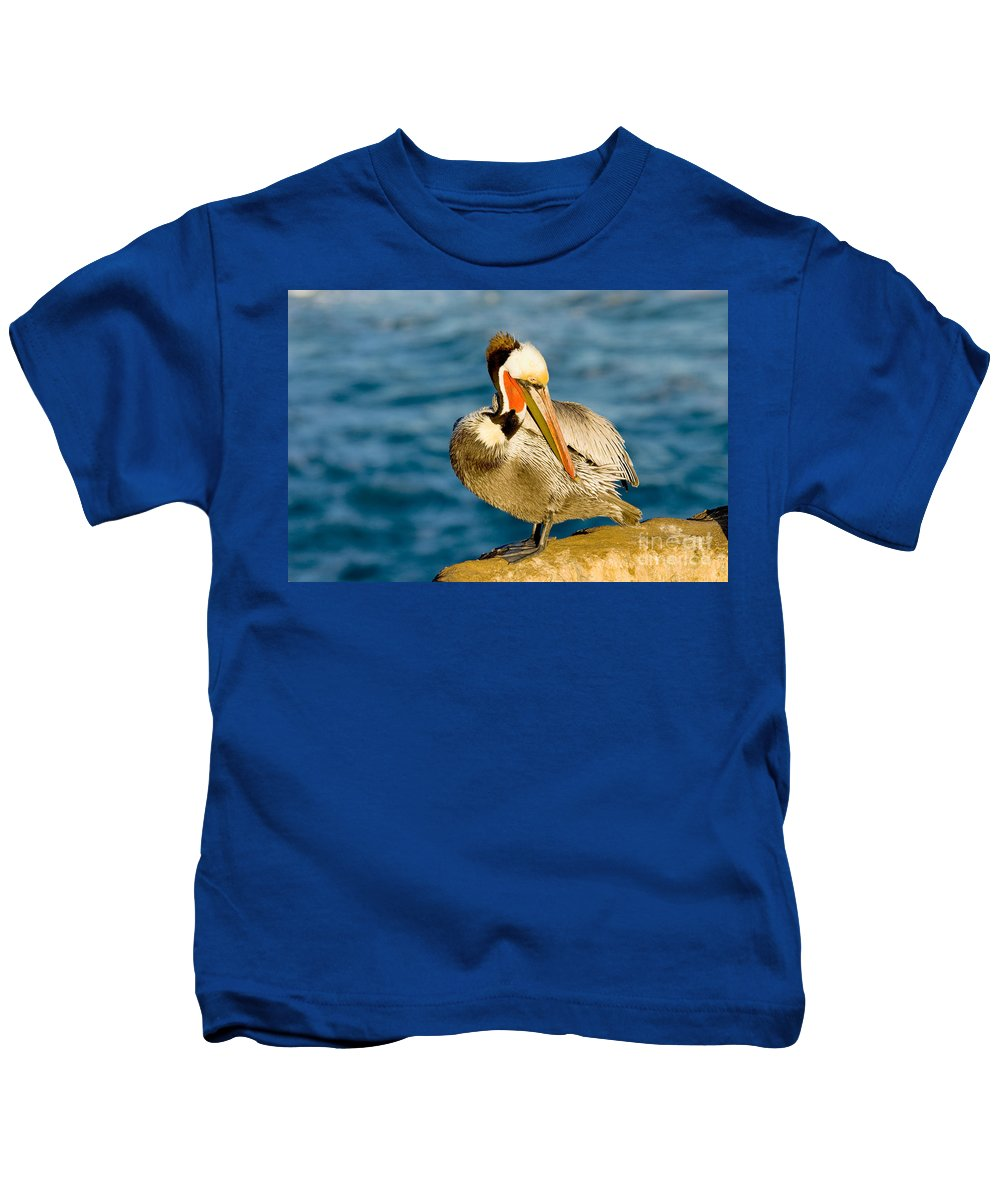 Preen Kids T-Shirt featuring the photograph Brown Pelican Preening by Anthony Mercieca