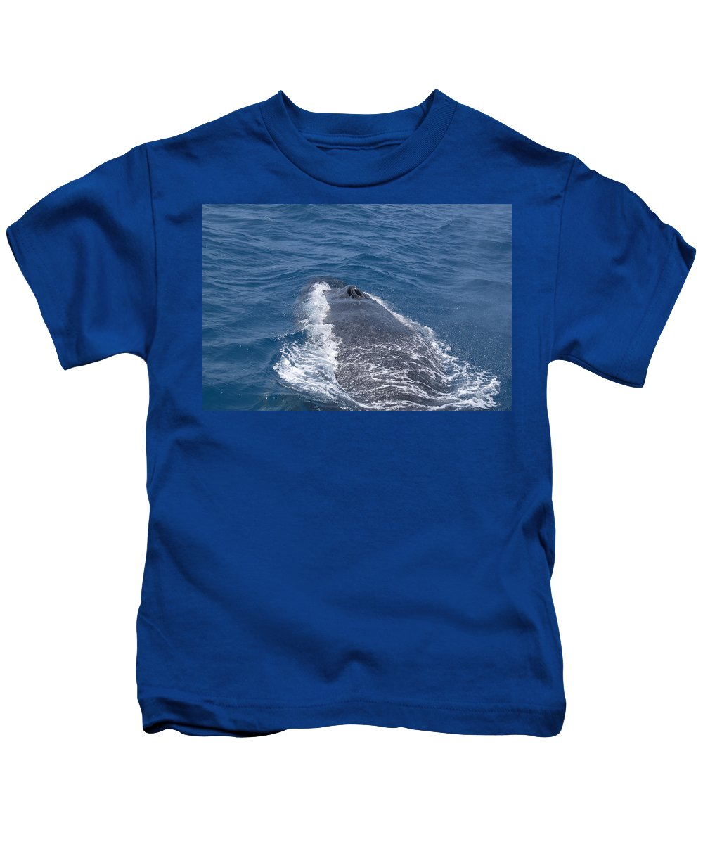Australia Queensland Qld Kids T-Shirt featuring the digital art Humpback Whales by Carol Ailles